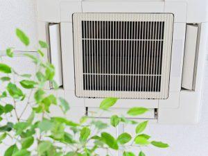 3 Formas de mantener la calidad del aire interior de forma natural